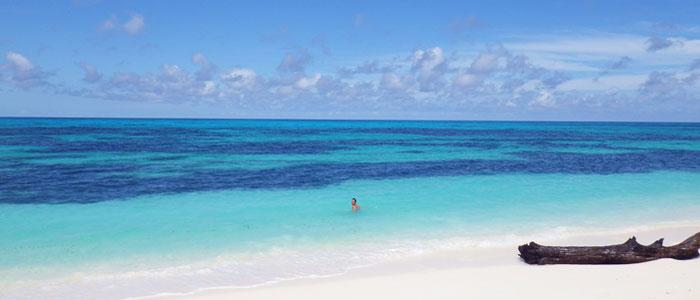 Offerta Vacanze Seychelles